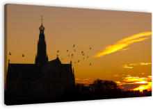 Sunrise in Haarlem wanddecoratie. A beautiful sunrise in the city of Haarlem, The Netherlands.<br><br>I do not remember what scared the birds, but it stopped them from their morning break on the St. Bavochurch.